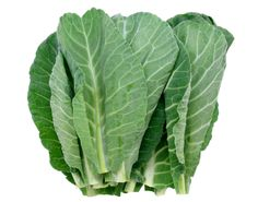Collard Greens are another long-lasting leafy veggie that will grow year round & is best in Winter in the South. Another biennal, it will need to be replanted, but I am including it here because the seed can go in the ground during the spring garden planting, it will be there for use all winter long into the following spring.