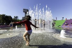 Blaxland Common Sydney Olympic Park