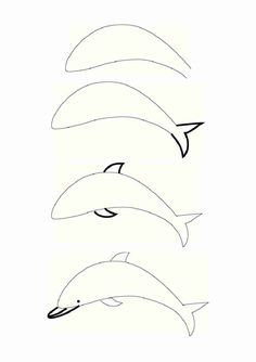 how to draw a dolphin - Google Search
