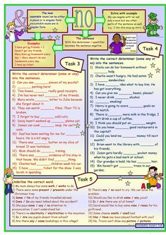 SOME & ANY & NO * grammar * 5 tasks * 2 pages * with key *** fully editable*** worksheet - Free ESL printable worksheets made by teachers
