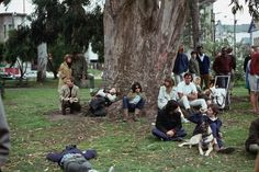 """A group of hippies gathered at a """"happening"""" in Golden Gate Park.   21 Photos That Will Transport You To San Francisco In 1967"""