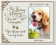Pet Loss Gifts, Pet Gifts, Multi Picture Frames, Pet Memorial Gifts, Remembrance Gifts, Sympathy Gifts, Glass Photo, Pet Memorials, Memories