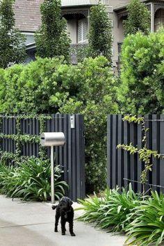 Easy Cheap Backyard Privacy Fence Design Ideas 01