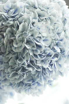 Ana Rosa ✦★ ♥ ♡༺✿ ☾♡ ♥ ♫ La-la-la Bonne vie ♪ ♥❀ ♢♦ ♡ ❊ ** Have a Nice Day… Hortensia Hydrangea, Blue Hydrangea, Hydrangeas, Bleu Pale, French Blue, Love Blue, Gras, Dusty Blue, Shades Of Blue