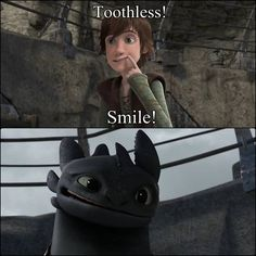 """""""Twinsanity"""". Loved this episode. It was so cute how everyone else was teaching their dragons the hand motions for attacking and here was Hiccup teaching Toothless the hand motions for """"Smile""""."""