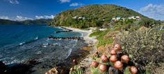 Panoramic view of Frenchmans resort in the BVI #bvi #frenchmansbvi #boutiquehotel