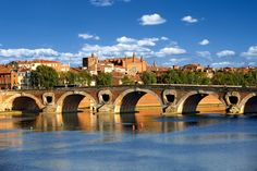 Why You Should Skip Paris and Visit Toulouse Instead Toulouse, Lyon, Le Canal Du Midi, Paris Travel Guide, Travel Tips, Adventures Abroad, Barcelona Travel, Champs Elysees, France Travel