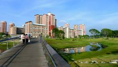"""How Bishan Park Became """"The Central Park"""" of Singapore - Landscape Architects Network"""