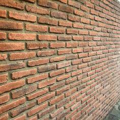 Monta brick slips