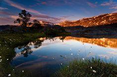 Norway Rago National Park ar 3 AM morning