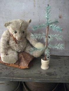 Tattered Teddy...with a feather tree. Sweet!