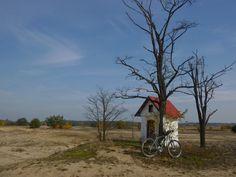 Są takie szlaki, które poza przyjemnością z jazdy dadzą Ci dobrą dawkę historii: http://lubimyrowery.pl/trasy/podkarpackie/historyczny-szlak-rowerowy-gminy-jarocin/