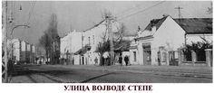 Vojvode Stepe street in Belgrade ~ Serbia