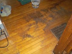Yep, that is a dirty floor! Did they know how to scrub a floor?????