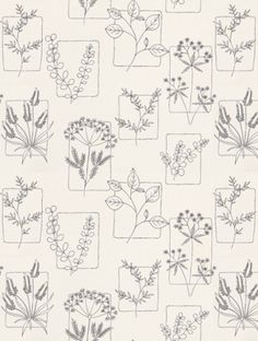 Herbes Line (0271HRLINEZ), a feature wallpaper from Little Greene, featured in the 50s Line Papers collection.