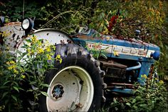 Forgotten Ford Tractor Photography 8x10 Photo by BarlowsCreations, $15.00