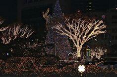 Como é o Natal na Coreia?