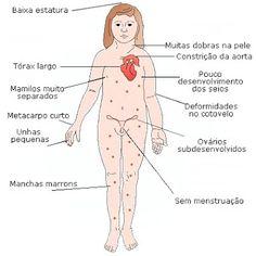 TRABALHO DE GENÉTICA HUMANA