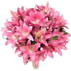 Bouquet de Lys rose