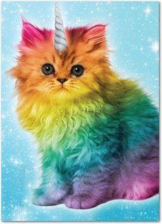Un chat Licorne I Love Cats, Cute Cats, Funny Cats, Baby Animals, Funny Animals, Cute Animals, Crazy Cat Lady, Crazy Cats, Unicorn Cat
