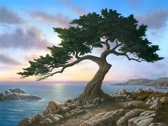 Monterey Sunset by Patrick O'Rourke Sunset Landscape, Fantasy Landscape, Landscape Art, Landscape Photography, Nature Photography, Picture Tree, Photo Tree, Tree Watercolor Painting, Watercolor Landscape