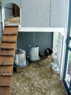 Inside of Garden Coop chicken coop.