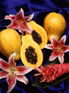"""Papaya For Rejuvenation. Christopher Columbus called papaya """"fruit of the angels"""". This delicious, sweet fruit with spherical or pear shaped form Exotic Fruit, Tropical Fruits, Recipes Using Papaya, Indoor Fruit Trees, Papaya Juice, Hamster Eating, Hamster Food, Hamster Care, Veggies"""