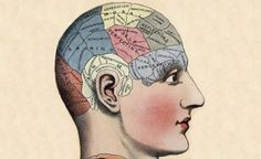 Top 4 Ways to Improve Your Memory Right Now   RateMDs Health Blog