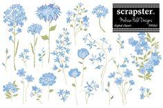Hand Drawn Flowers: Blue 2 by Melissa Held Designs on @creativemarket