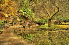 Alfred Nicholas Gardens Dandenongs Melbourne Australia