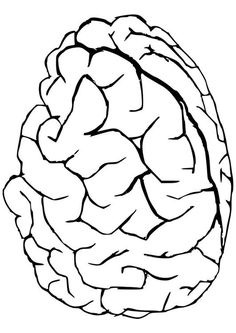 Coloring page Brain coloring picture Brain Free coloring sheets
