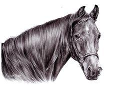 #astartian #horse #traditional #pencil #animal #art