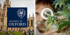 Oxford University Investing Millions Developing Innovative...