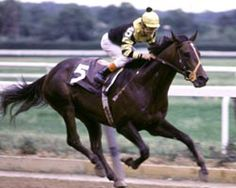 1977 - Seattle Slew wins Triple Crown (Kentucky Derby, Preakness, Belmont Stakes)