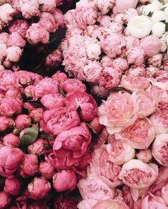 Die 130 Besten Bilder Von Blumenfiguren In 2019 Floral