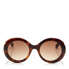 Womens 'Saint' Oversized Square Browline Sunglasses in 2020