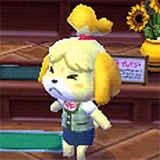 video games nintendo animal crossing nds isabelle