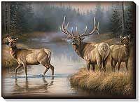 Autumn Mist--Elk Framed Gallery Canvas   Wild Wings