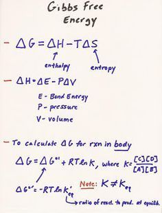 MCAT+study   MCAT Study Blog: BIO Lecture 1: Thermodynamics Chemistry Help, Chemistry Basics, Chemistry Classroom, High School Chemistry, Physical Chemistry, Chemistry Notes, Teaching Chemistry, Chemistry Lessons, Science Notes
