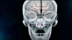 Η ιστορία αλλιώς | Εγκεφαλική τόνωση Skull, Sugar Skull