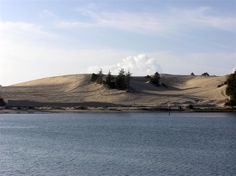 """Sand Dunes - North Bend, Oregon  """"Had fun with the four wheelers although I took one of the hills to fast and my four wheeler landed on top of me"""
