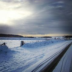 De Hogeberg onder een witte laag sneeuw, dat is #ooktexel