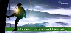 There are people who thrive on challenges. Success is not the end of the road, but a mere milestone for them.