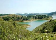 Spring time in the interior of the Baixo Alentejo. http://www.hideawayportugal.com/modules/property/listing-1019.htm