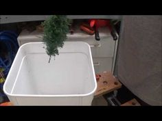 Episode 67 17 Make Your Own Trees