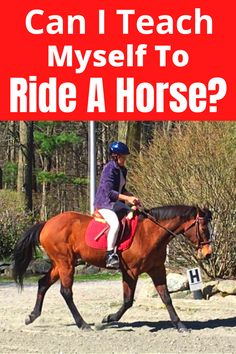 So you are thinking about learning how to ride a horse, by learning to ride DIY style in other words on your own. Maybe you just want to learn on your own, or you have a horse to ride... Click link to read blog post! #learntoridehorses #howtoridehorses #horsebackriding #horseriding