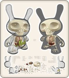 [Dunny  #Anatomical Sculpture by Jason #Freeny]