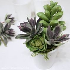 Milk glass succulent planter is a beautiful way to display your vintage milk glass. They're perfect for DIY gifts and easy to make in less than 5 minutes. Christmas Craft Projects, Easy Christmas Crafts, Simple Christmas, Handmade Headbands, Handmade Crafts, Handmade Rugs, Altered Tins, Altered Art, Tin Can Lanterns