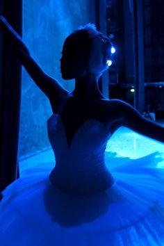 Blue Ballerina