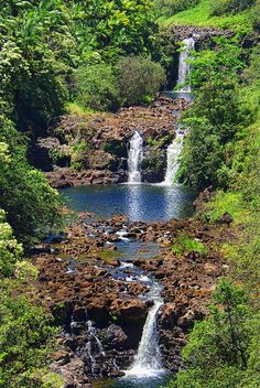 Hawaii  3-Day Hawaii Four Island Adventure US$3550pp  For more info, email: clientcare@coasttravelservices.com or call 818-988-9284